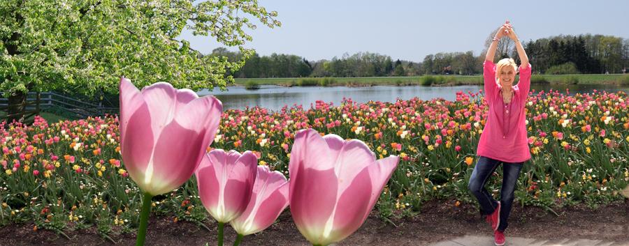Tulpenmeer-klein
